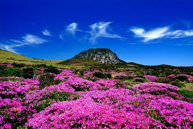 5 Keindahan Kota Korea yang Bisa Menjadi Destinasi Menarik